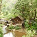 Parcul:Mori de apa-Rudaria