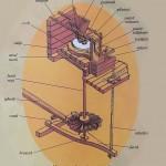 Mecanismul - morii